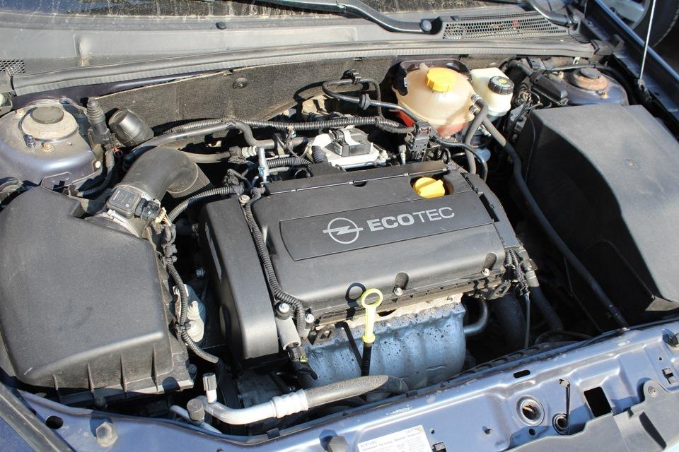 Z19DTH в подкапотном пространстве Opel Zafira B